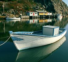 Quidi Vidi  Village by Brian Carey