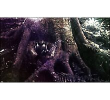 Protected By Wood Elves #2 Photographic Print