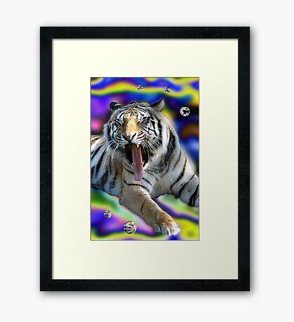 Tiger Two Framed Print