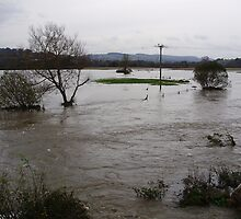 flooded farmland around river axe by brucemlong