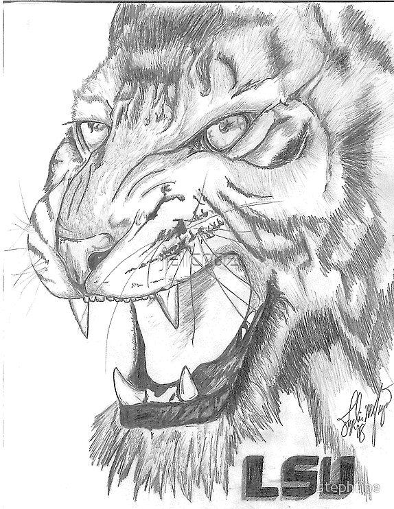 White Tiger by jalcruz