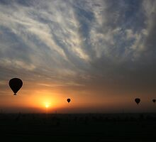 West Bank Balloon Ride at Sunrise by Roddy Atkinson