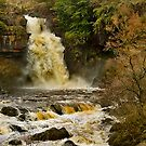 Thornton Force, Ingleton Waterfalls, Yorkshire Dales by Steve  Liptrot