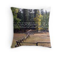 Fences Throw Pillow