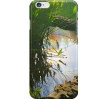 Equinox Sun in the Pond iPhone Case/Skin