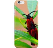 Red Beatles  iPhone Case/Skin