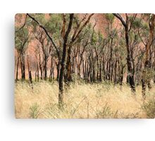 Uluru detail Canvas Print