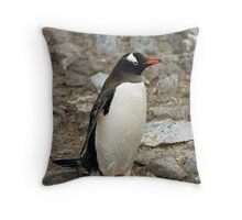 "Gentoo Penguin ""Pygoscelis papua"" #1 Throw Pillow"