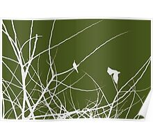 White and Green birds in trees Poster