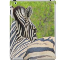 Zebra Colors - Patterns in Nature iPad Case/Skin