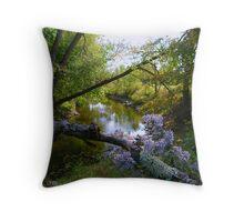 A River View Throw Pillow