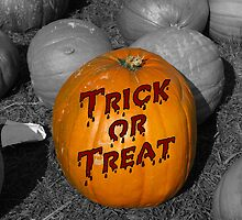 Trick or Treat by Stephen Ryan