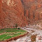 Todra Gorge #1 by Peter Hammer