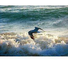 Wave skimming Photographic Print