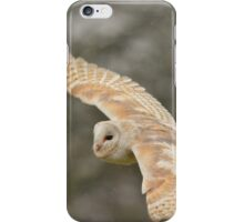Barn owl in the rain iPhone Case/Skin