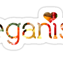 VEGANISM = LOVE  Sticker