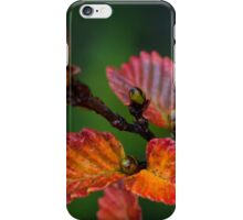 Red Fagus iPhone Case/Skin
