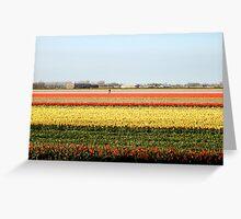 Keukenhof  Serie - The flower field  Greeting Card