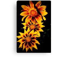 Fabulous Yellow Flower Canvas Print