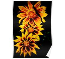 Fabulous Yellow Flower Poster