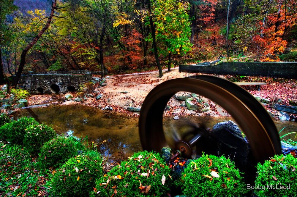 Fall Garden by Bobby McLeod