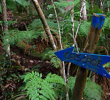 Cascade, this way, Mt Koghi, New Caledonia by Roger Barnes