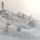 Kittyhawk III, RAF Museum, Hendon by Jack Froelich