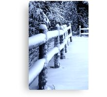 Snow on Fence Canvas Print