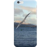 Looking North on Windermere iPhone Case/Skin