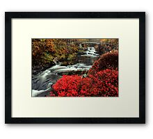 Along the Mill Trail Framed Print