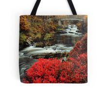 Along the Mill Trail Tote Bag