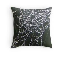 Dew On Spider Web Throw Pillow