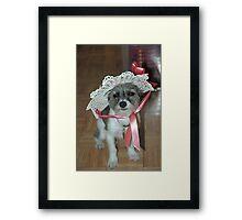 Chloe's Ready for Spring Framed Print