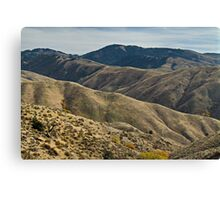 Rugged & Rolling Canvas Print
