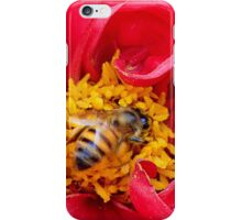bee on a rose iPhone Case/Skin