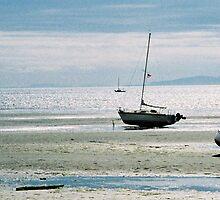 Birch Bay Low Tide  by ubumebme