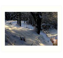 1032-Winter Greeting Art Print