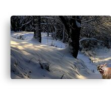 1032-Winter Greeting Canvas Print