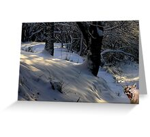 1032-Winter Greeting Greeting Card