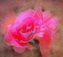 Spring Bloom by designingjudy