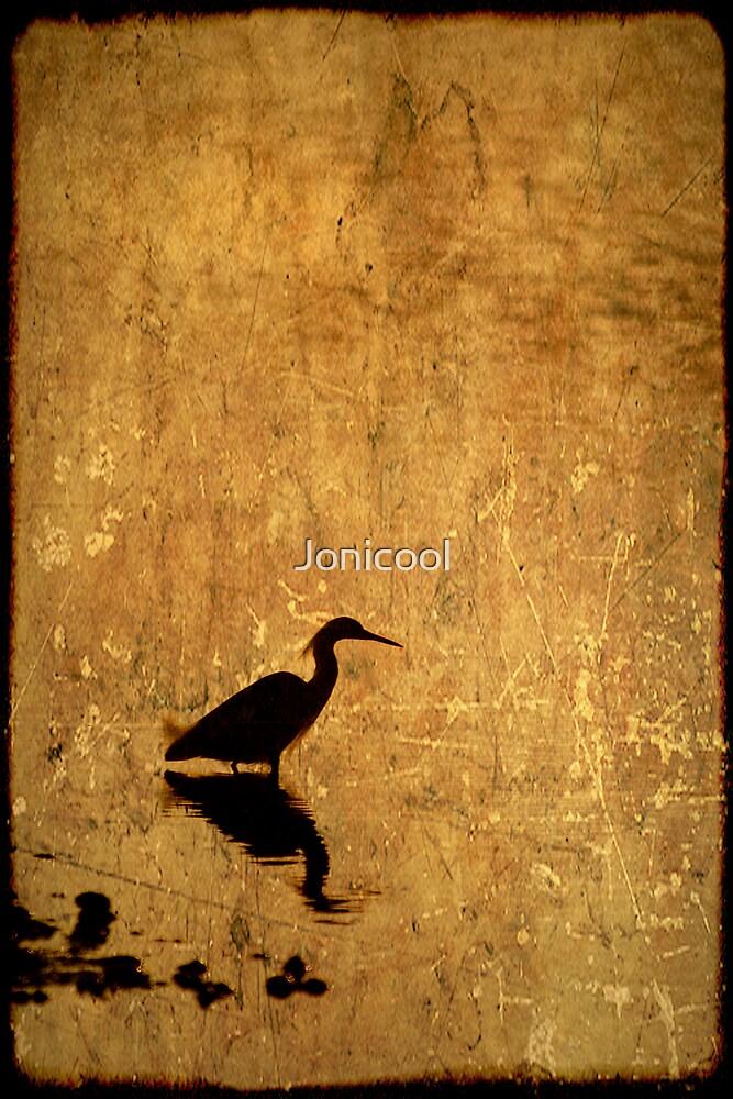 Bayou Silhouette by Jonicool