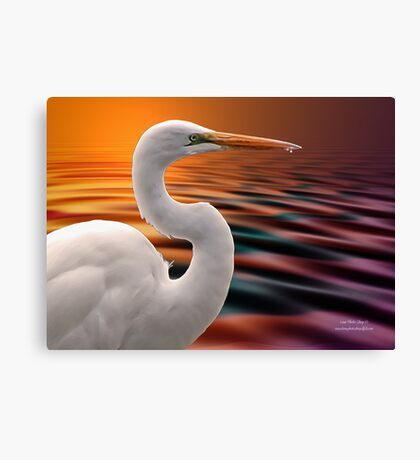 One More Look Canvas Print