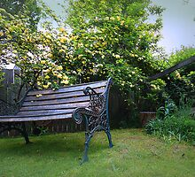 Banksia Rose Bench by George Petrovsky
