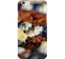 Barnacles I iPhone Case/Skin