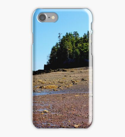 Temporarily Exposed! iPhone Case/Skin