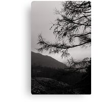 Moody lake district Canvas Print