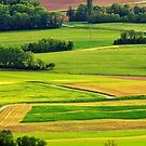 Rural colors of spring by Patrick Morand