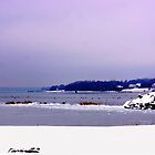 Winter In Rhode Island by Nancy Richard
