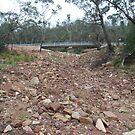 New bridge - nothing to cross by GeoGecko