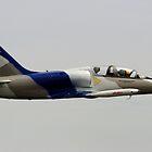 Aero L-39 Albatros by Noel Elliot
